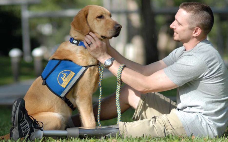 FitBark_K-9_Units_Working_Dogs_02-935x583 | FitBark for Professionals