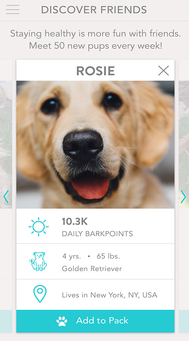 FitBark_Mobile_App_Discover_Friends_02 | How do I find new dogs to add to my pack?