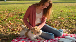 FitBark_Woman_Dog_Picnic_Stories-uai-258x145 | How can I train my pup more effectively for dog sports?