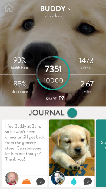 FitBark_Homescreen_No_Phone-350x621 | How do I change my dog's activity goal?