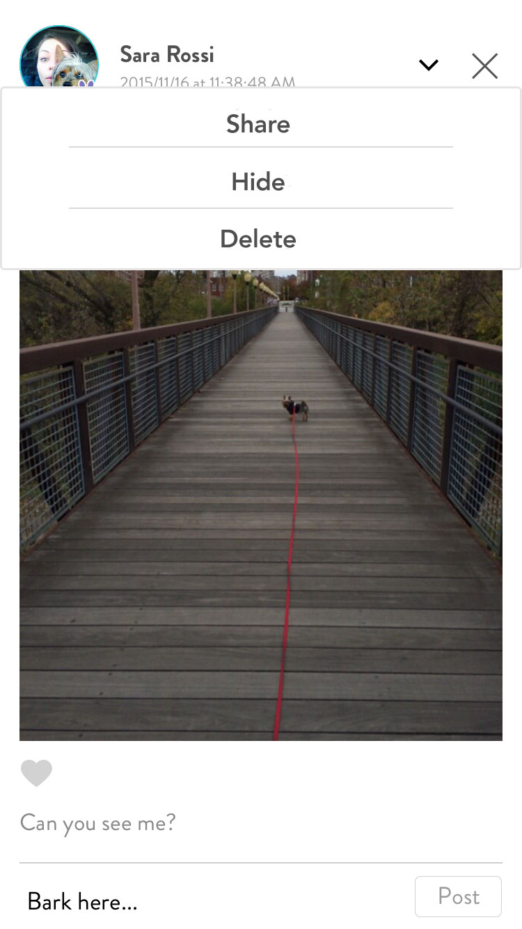FitBark_Mobile_App_Share_Hide_Delete_Post | How can I hide, delete or share a journal post?