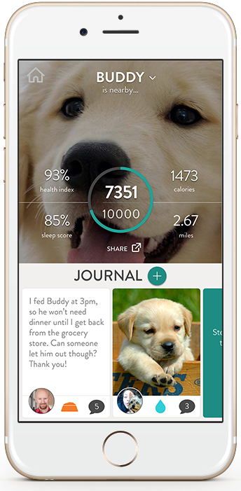 FitBark_iPhone_Gold_Home_Screen_New | What do I need to do to sync my dog's FitBark?