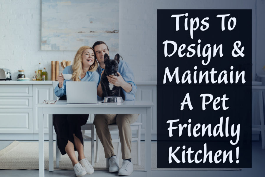 FitBark_family_kitchen-900x600 | How to Design and Maintain a Pet-Friendly Kitchen