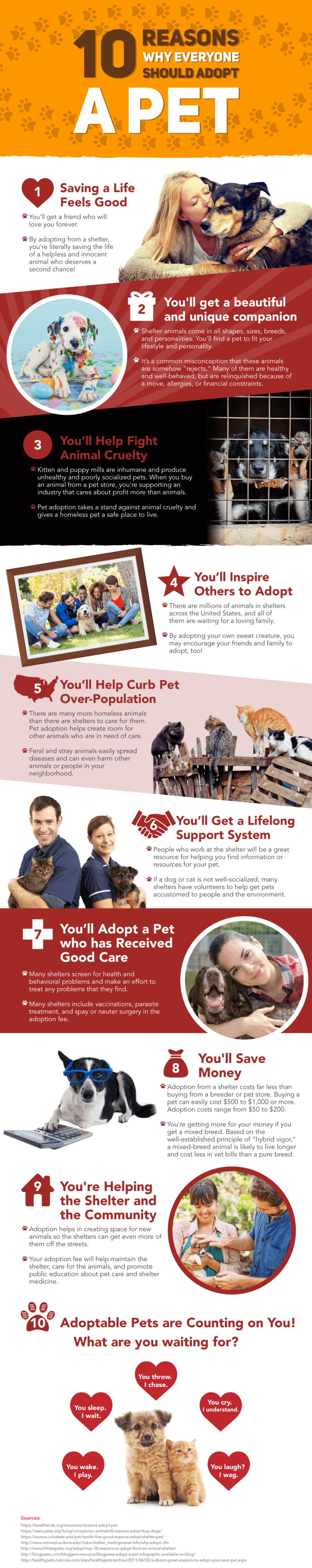 FitBark_10-Reasons-To-Adopt-A-Pet-900x4524 | Man's Best Friend Up for Adoption