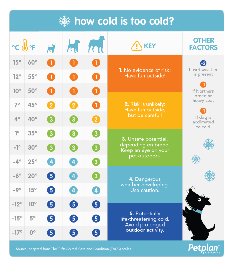 FitBark_pet_plan_temp_chart-895x1030 | Keeping Your Dog Safe & Warm in the Winter