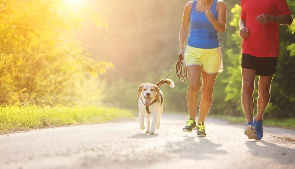 FitBark_people_running_dog-1030x591 | 10 Fun Ways to Exercise Your Dog