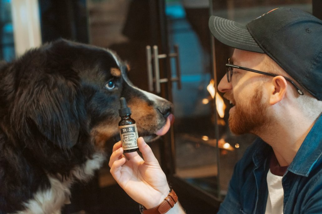 FItBark_dog_man_cbd_oil-1030x687 | CBD for Dogs: 3 Essential Things You Must Know