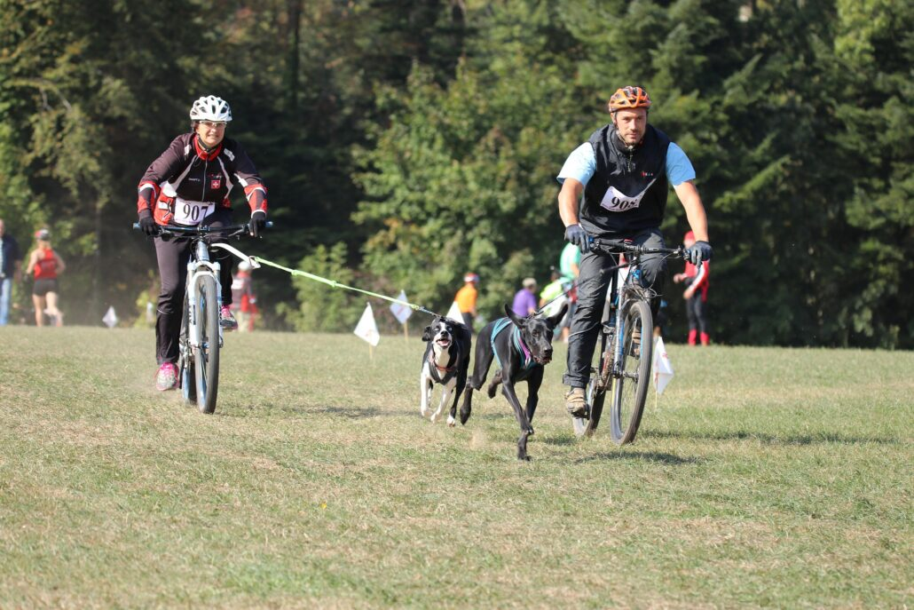 FitBark_bikejoring_man_bike_outside-1030x687 | Human-Dog Sports for Dog Owners on the Move